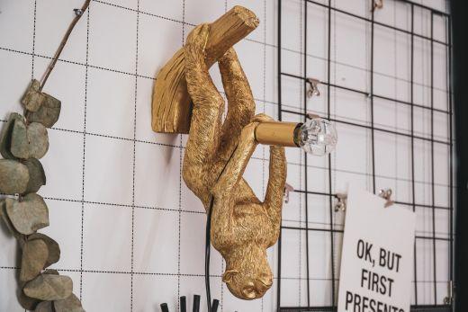 Housevitamin Hangende apenlamp