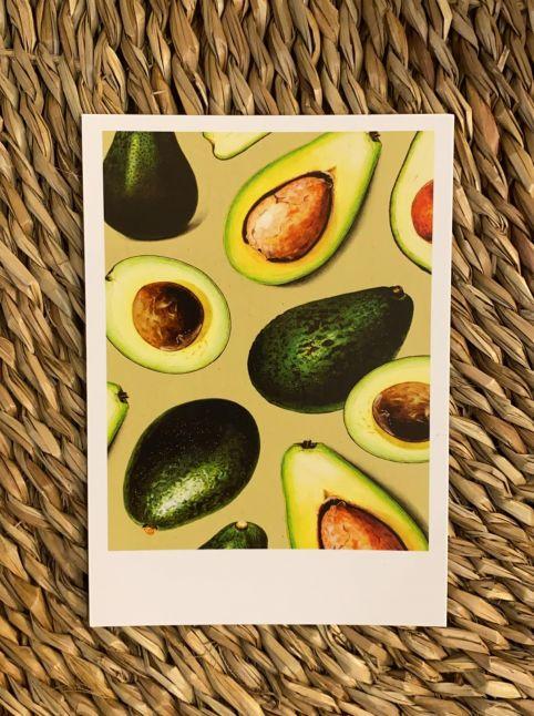 PAND LABEL KAART A6    fresh avocado
