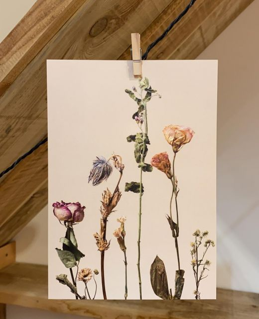 PAND LABEL KAART A5 |  Dried flowers