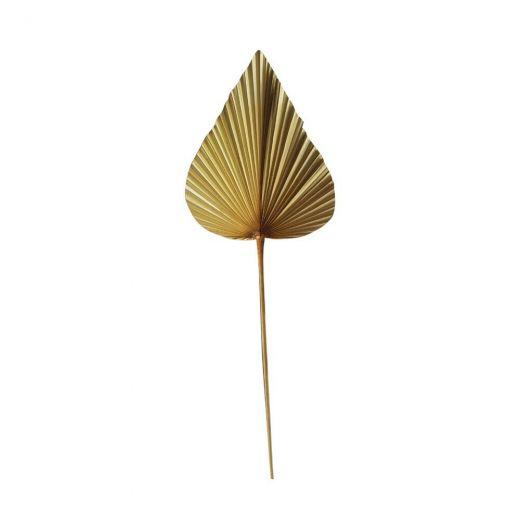 HomeFurn Palmblad tak gedroogd 50cm