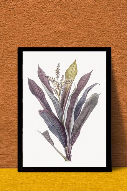 vintage Cordyline fruticosa interieur kaart  | A4
