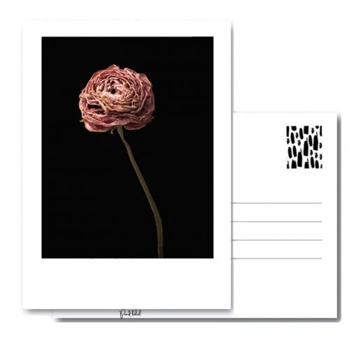 PAND LABEL KAART A6 | Dried ROSE