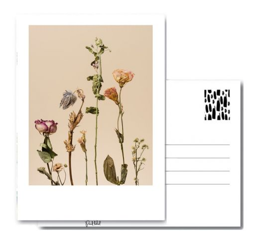 PAND LABEL KAART A6    Dried flowers